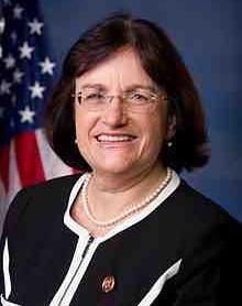 Ann_McLane_Kuster,_Official_Portrait,_113th_Congress.jpg